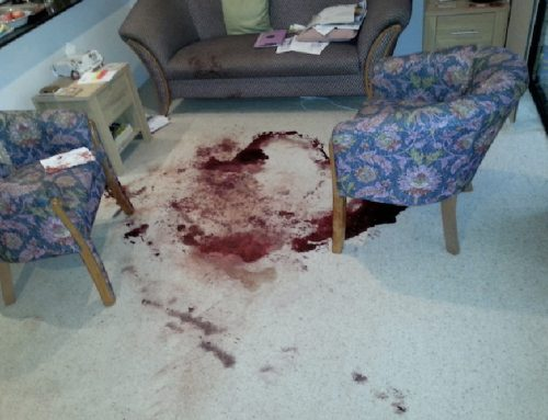 How Much Do Crime Scene Cleaners Make in Australia?